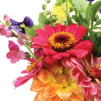 Long established florist based in multi-cultured inland city of NSW.New Listing.