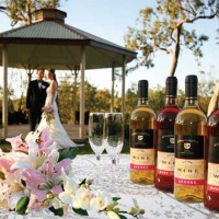 Live the dream with picturesque North Queensland Winery and Function Venue.New Listing.