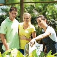 Service the key to success for building & garden supplies business.New Listing.